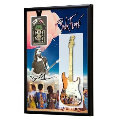 Pink Floyd Guitar & Backstage Pass Display