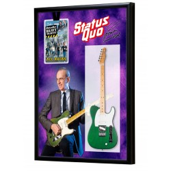 Francis Rossi Status Quo metal Guitar & Backstage Pass Display