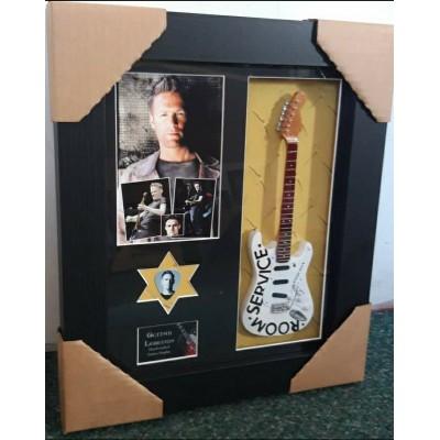 Bryan Adams Framed Guitar & Plectrum Presentation