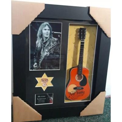 Neil Young Framed Guitar & Plectrum Presentation