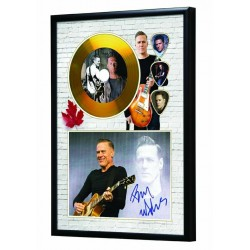 Bryan Adam's Gold Look CD & Plectrum Display