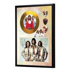 Bee Gees Gold Look CD & Plectrum Display