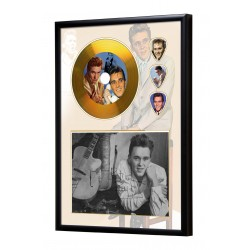 Billy Fury Gold Look CD & Plectrum Display