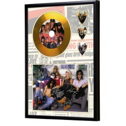 Guns & Roses Gold Look CD & Plectrum Display