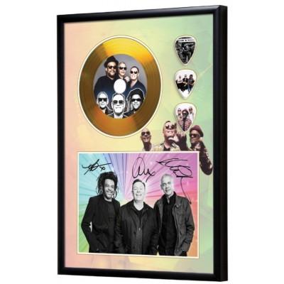 UB40 Gold Look CD & Plectrum Display