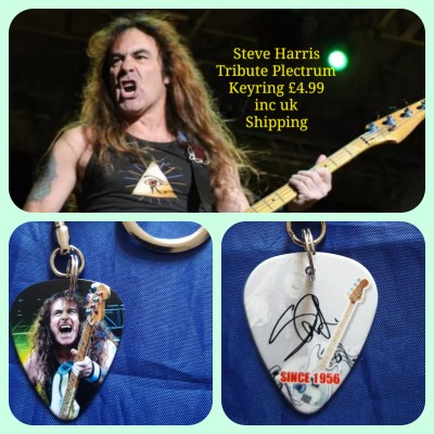 Iron Maiden Steve Harris Double Sided Tribute Plectrum Keyring