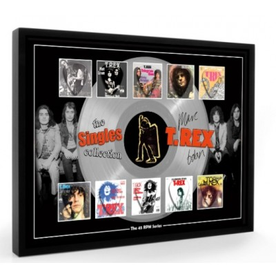 T Rex Marc Bolan Plectrum 45rpm tribute Set Display