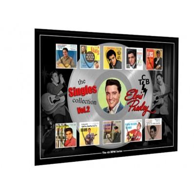 Elvis Vol II Plectrum 45rpm tribute Set Display
