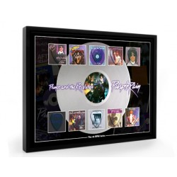 Prince Plectrum 45rpm tribute Set Display
