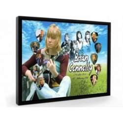 The Sweet Brian Connolly Tribute Plectrum Display