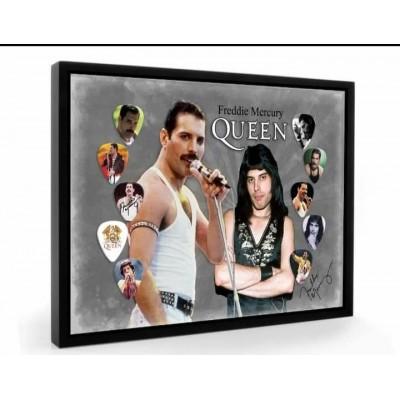 Freddie Mercury Queen Tribute Plectrum Display